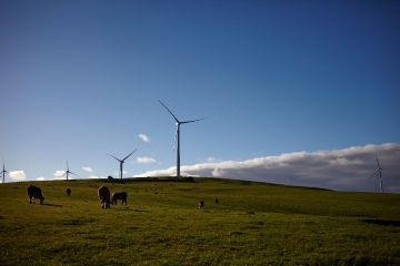 Downer to build Stage One of the Murra Warra Wind Farm