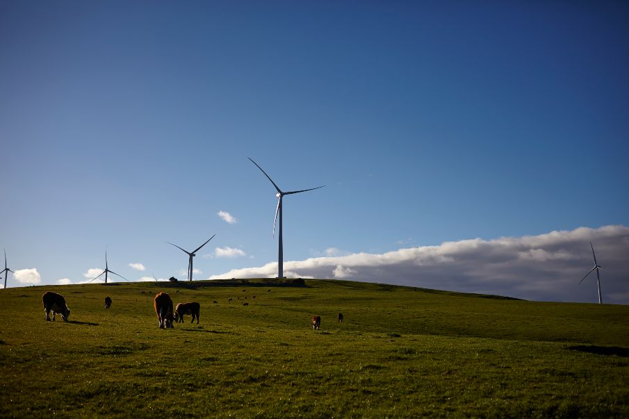Downer Senvion partnership to build Stage One of the Murra Warra Wind Farm